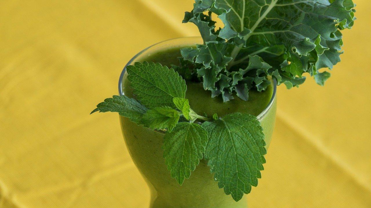 Best Blender For Kale